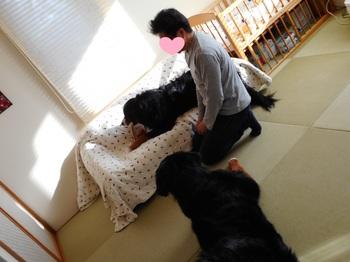 180224_シーちゃん家_045-1.jpg