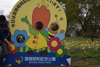 SO_160408_昭和記念公園_152.jpg