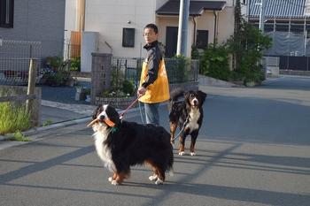 SO_160501_チョコちゃん_001.jpg