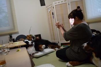 SO_160828_シーちゃん家訪問_059.jpg