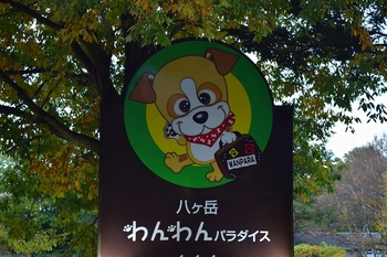 SO_161031_八ヶ岳(3日目)_003.jpg