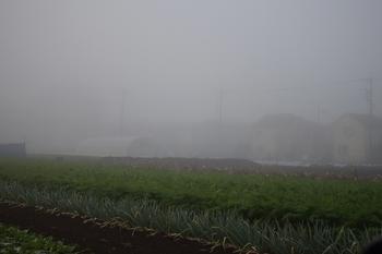 SO_161120_軽井沢写真館_001.jpg