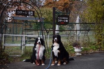 SO_161121_八ヶ岳体育館_029.jpg