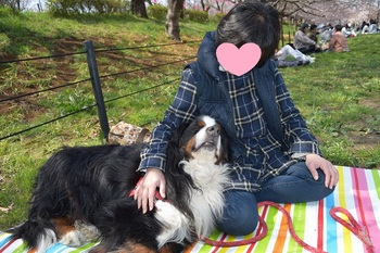 SO_170403_権現堂_051.jpg