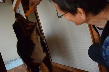 SO_170502_浅田_036.jpg