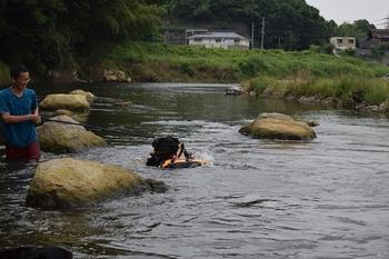 SO_170625_シーちゃんと川遊び_062.jpg