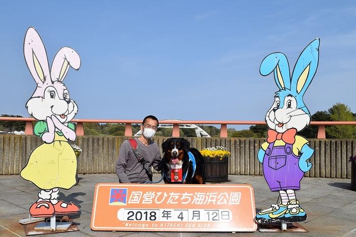 SO_180412_ひたちなか海浜公園_105.jpg