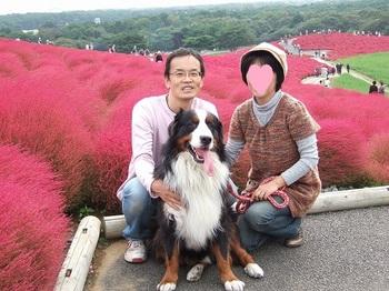 SO_2011-1013ひたちなか海浜公園0027.jpg