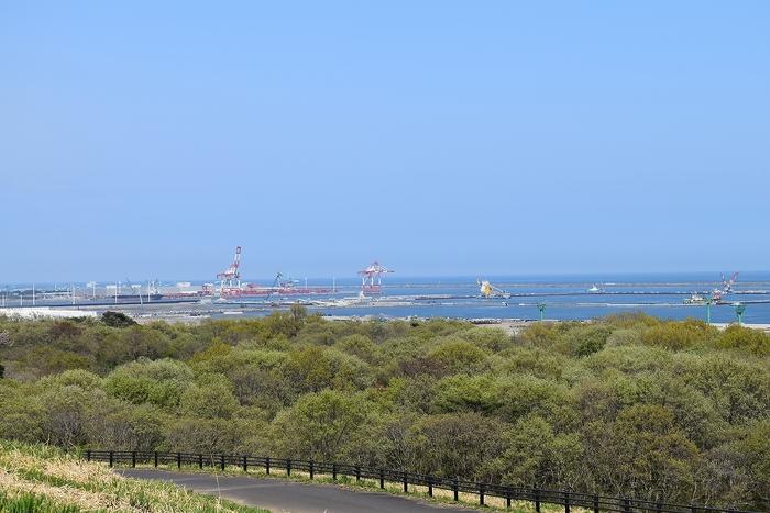 SO_180412_ひたちなか海浜公園_045.jpg